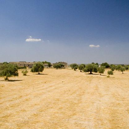typische Landschaft Siziliens
