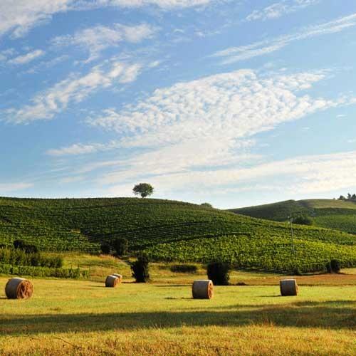Touristisch noch wenig erschlossen: Piemonte
