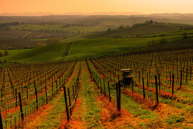 Zu jeder Jahreszeit schön: Weinregion Chianti in der Toskana.