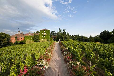 Golfreise Italien Golfpaket Golf Ferien Reisen Golfhotel Weingut medical spa Chenot edel style Luxushotel bestes Design cool