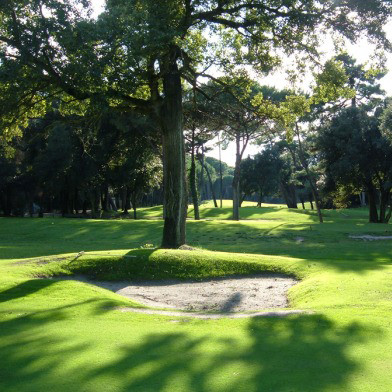 Golf Club Tirrenia - alter Baumbestand