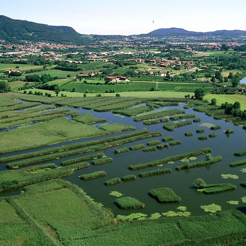 Naturschutzgebiet Torbiere