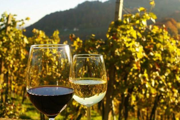 Eine Weinprobe mit Freunden