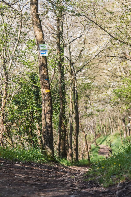Wanderweg Roches de Ham, Basse-Normandie, La Manche, Normandie