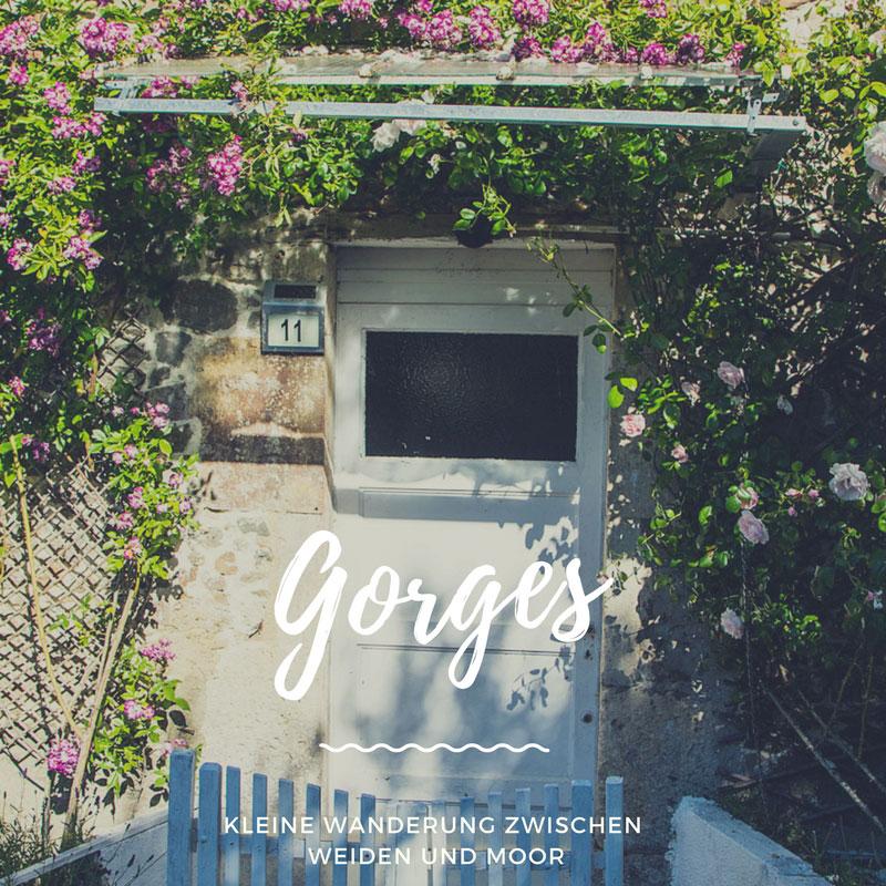 Wanderung durch Weiden und Moor bei Gorges