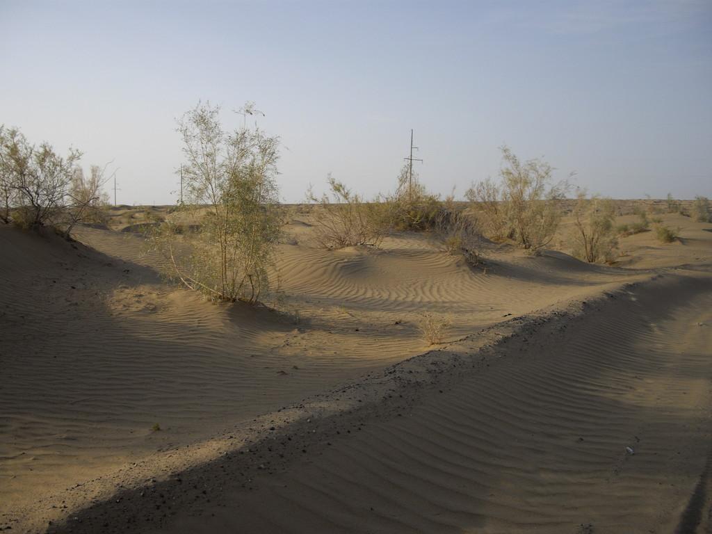 17.07....Wüstenimpressionen