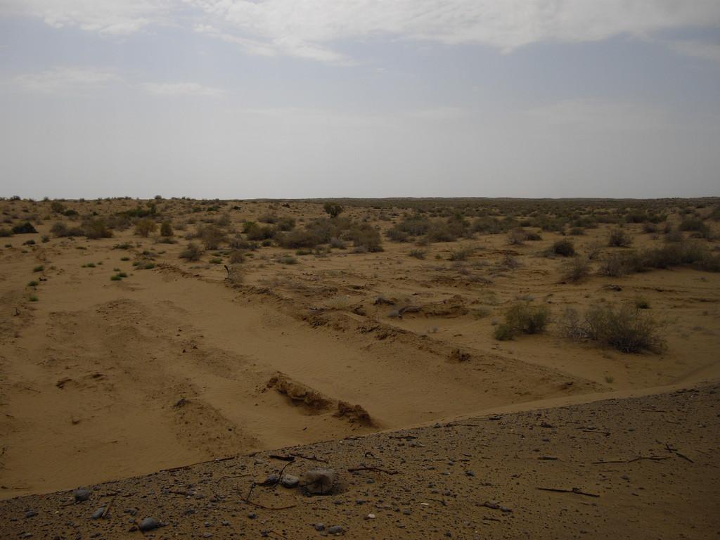 17.07. die turkmenische Wüste - 500 km in 5 Tagen bei 50 Grad Hitze