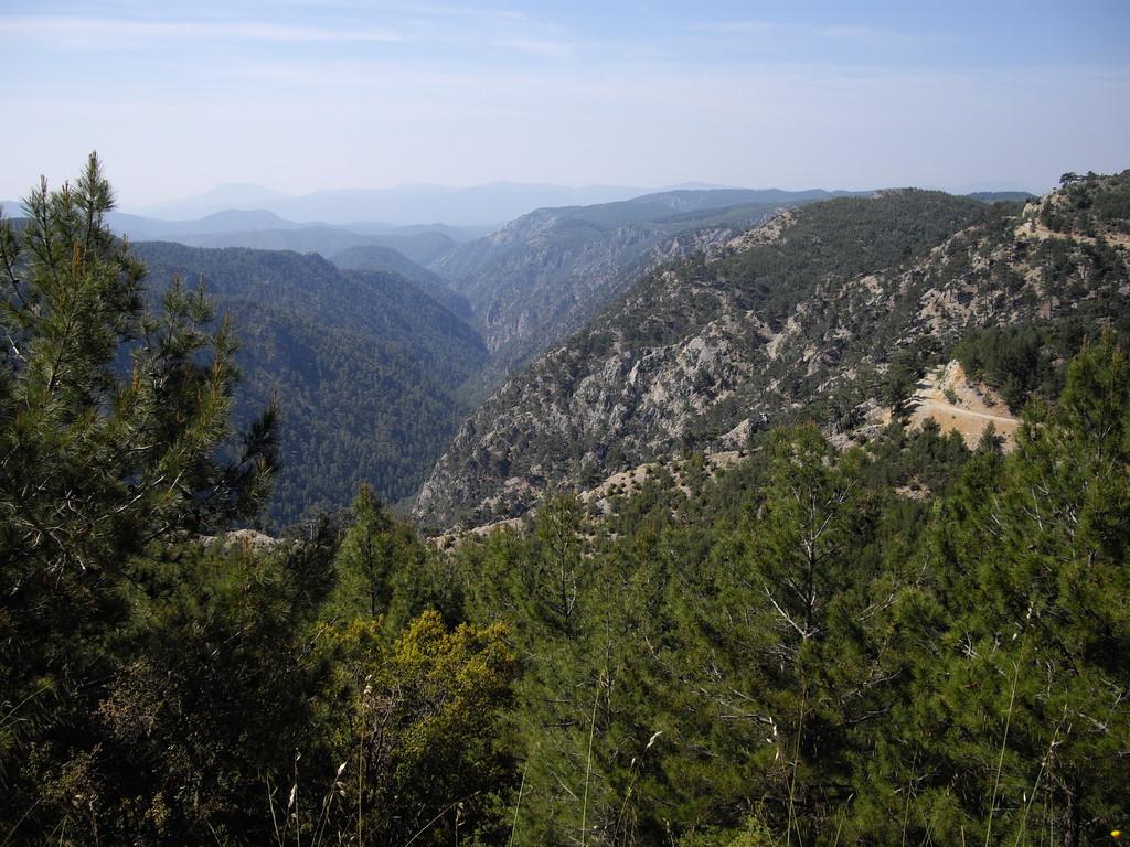 Ein unerwarteter Canyon...