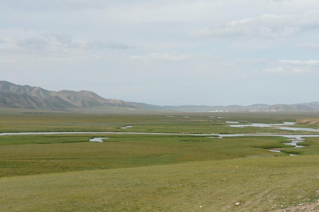 23.000 qm2 Grassland