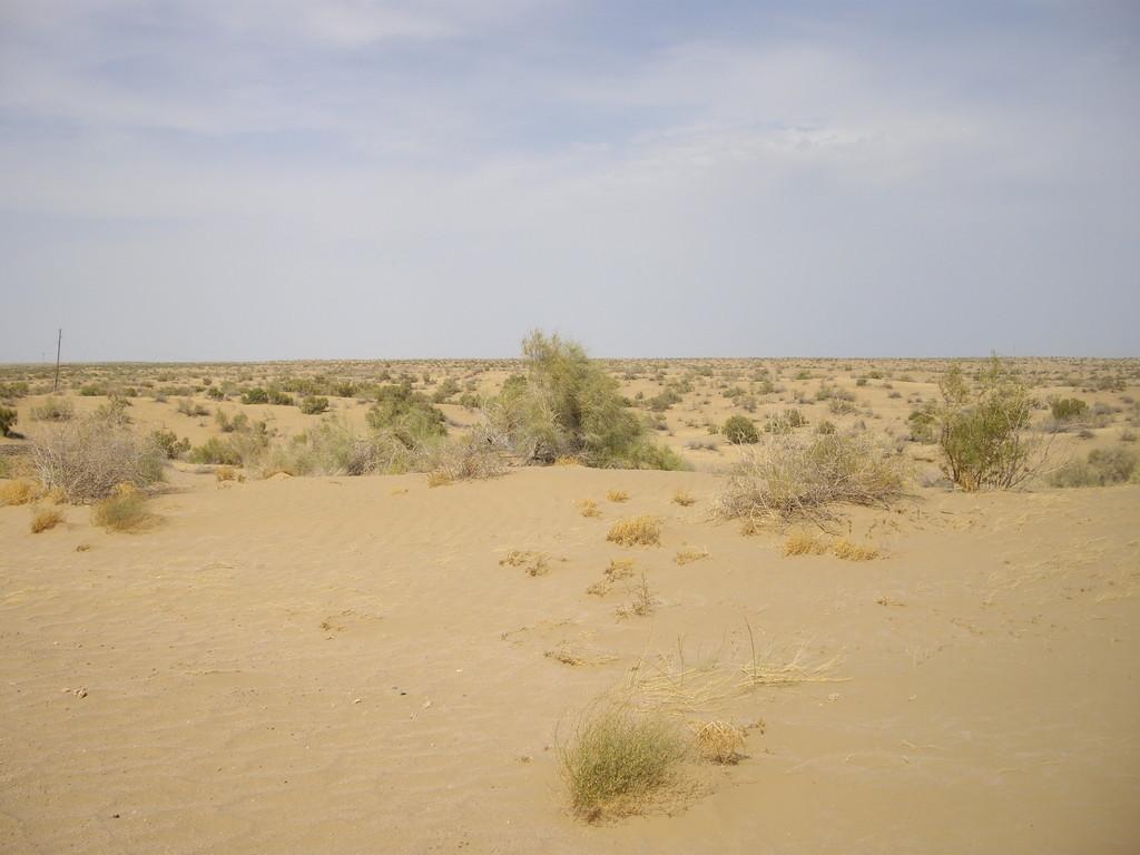 17.07. wieder in der Wüste
