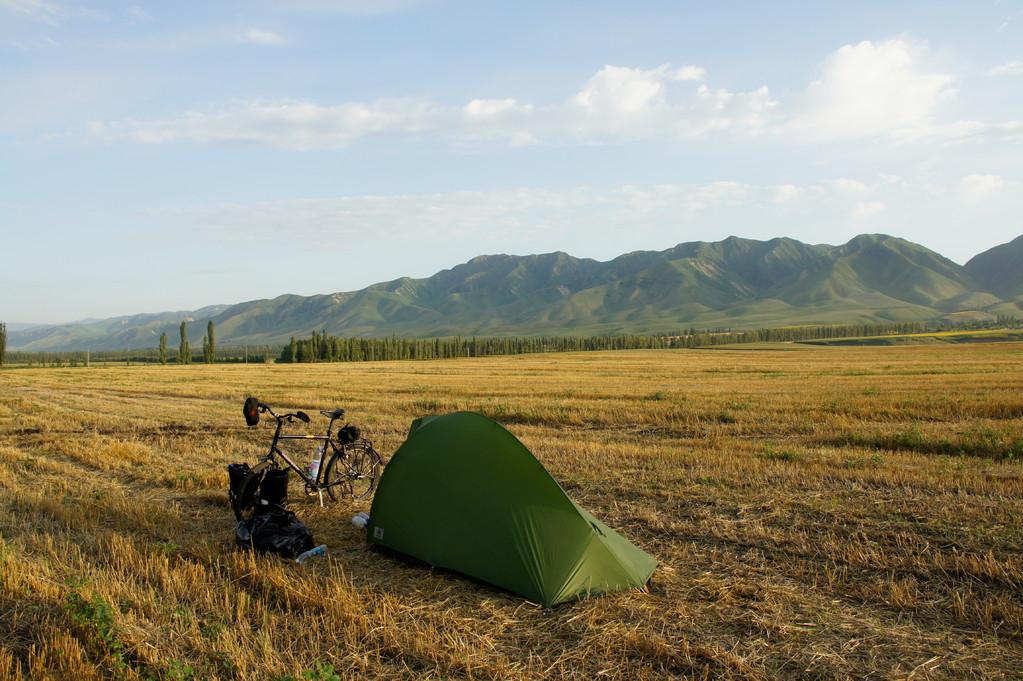 Auf einem frisch gemähten Kornfeld, das dem jungen Uiguren Daut gehört