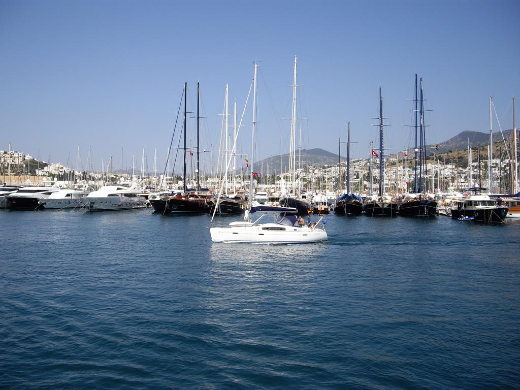 Im Hafen selbst
