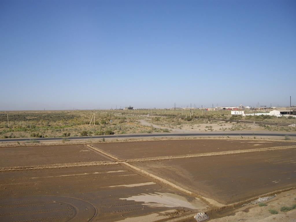 19.07. kurz vor Turkmanabad - 500 km in 5 Tagen - ich habe es gleich geschafft