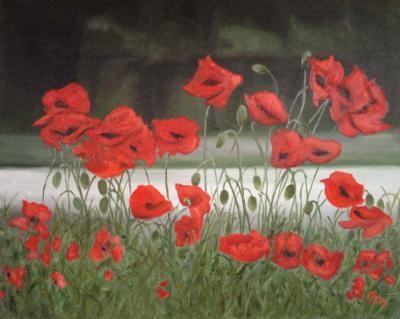Tsvetkova Asya – Poppy Field - olio tela - 50 x 40