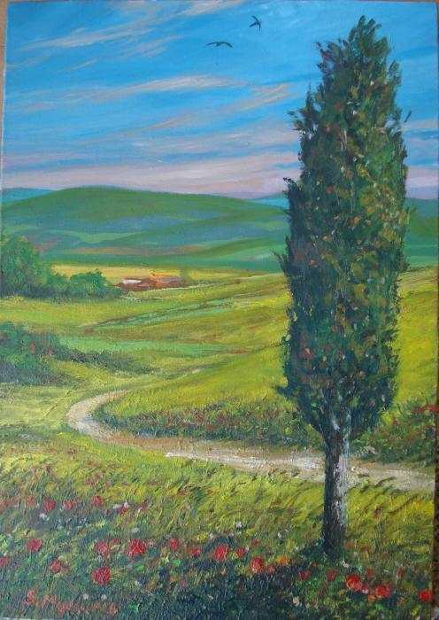 mulinacci sandro paesaggio toscano olio su tela 35 x 50
