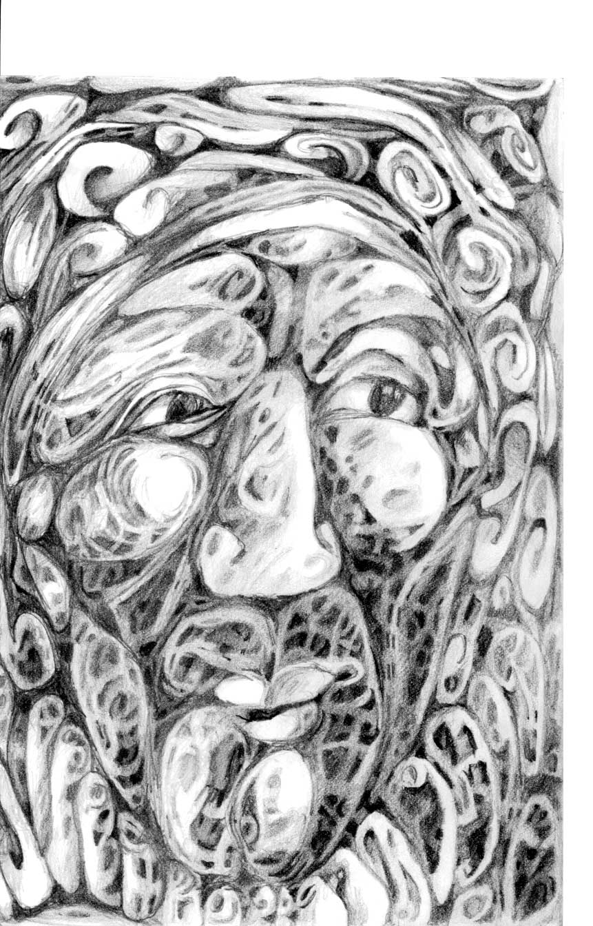 graphite 20x12,5 sur carnet Daler