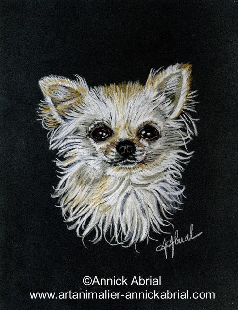 Portrait d'un Chihuahua au pastel