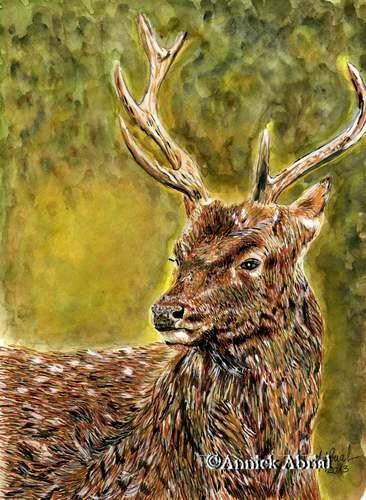 Le roi de la forêt - Gouache - Art animalier 32 cm x 24 cm - Disponible