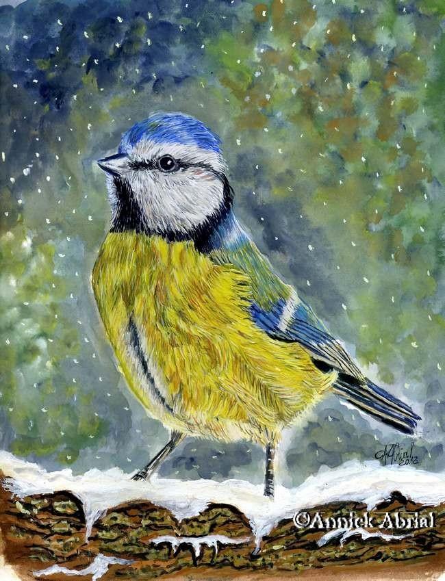 Mésange bleue - Peinture à la gouache inspirée d'une photographie de Gontrand 62 avec son aimable autorisation - Art animalier - 24 cm x 32 cm - 2013 - Disponible