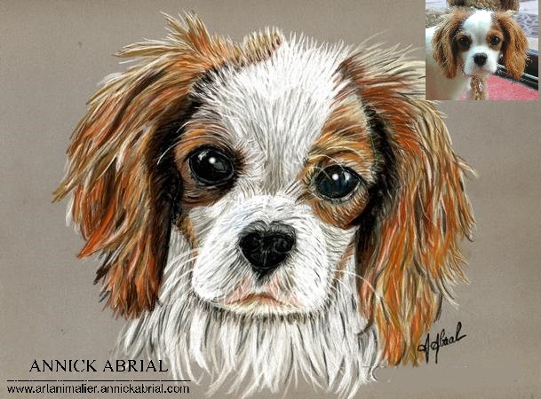 Portrait aux pastels chiende Holly format 24 x 30 cm