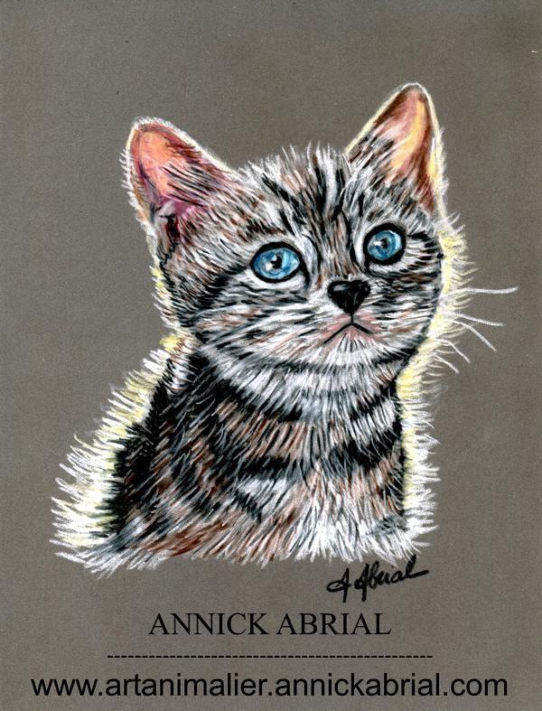 Portrait sur commande aux pastels secs d'un petit chaton prénommé Lido 2015