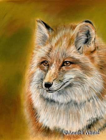 Le renard - pastels secs