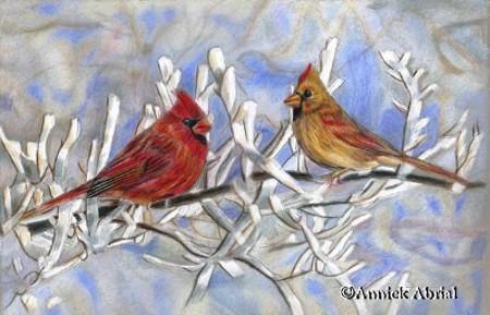 peinture d'oiseaux cardinal pastels secs