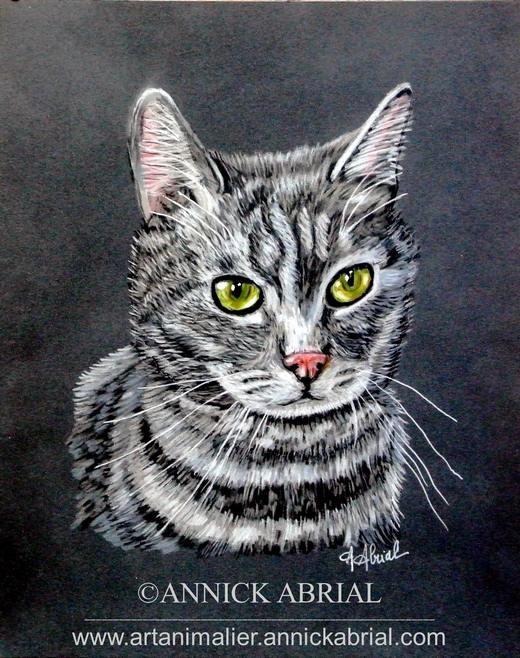 """Portrait aux pastels d'un chat tigré gris 1er prix au dernier concours """"Gagnez un portrait animalier de votre animal de compagnie"""" 2015"""