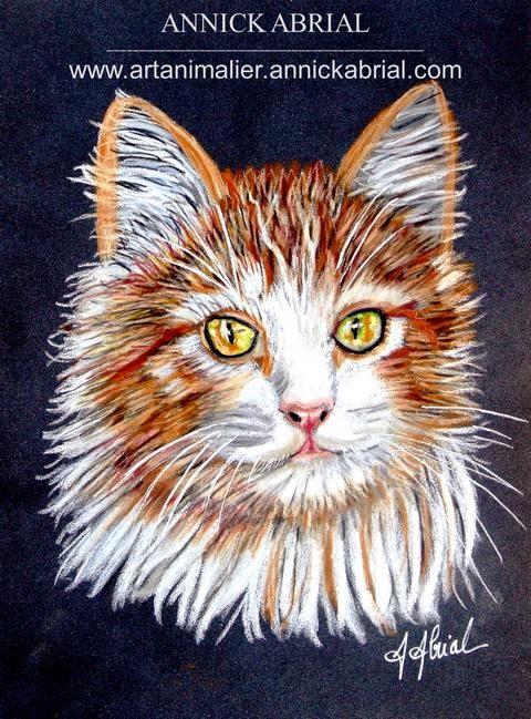 Portrait d'un chat sur commande au pastel format 18 x 24 cm