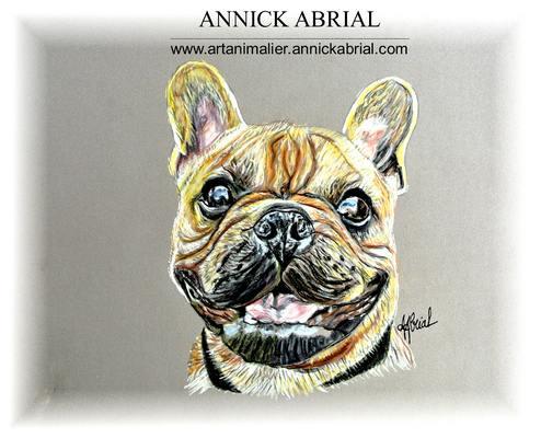 Portrait aux pastels d'un bouledogue français