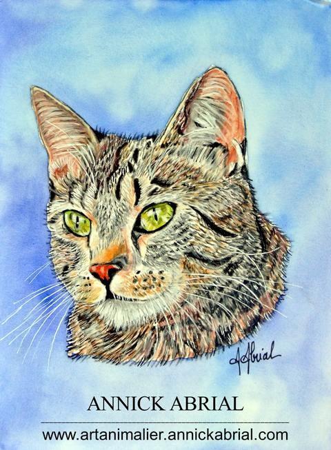 Portrait d'une chat sur commande ; chat au pastel, fond nuancé à l'aquarelle