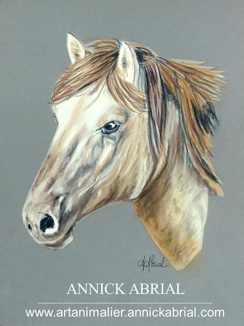 Portrait d'un cheval aux pastels sur commande 2015