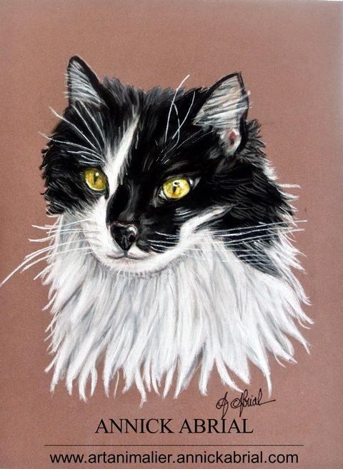 Portrait aux pastels secs d'un chat