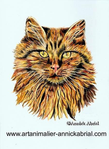 Portrait aux pastels d'un chat sur commande 20 cm x 30 cm 2015