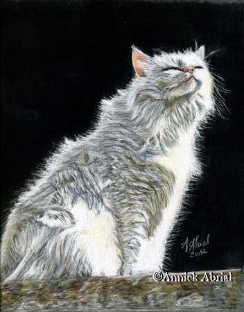 Lueur - Pastel et Crayons de couleur - Art animalier - 32 cm x 24 cm - 2012 - Disponible