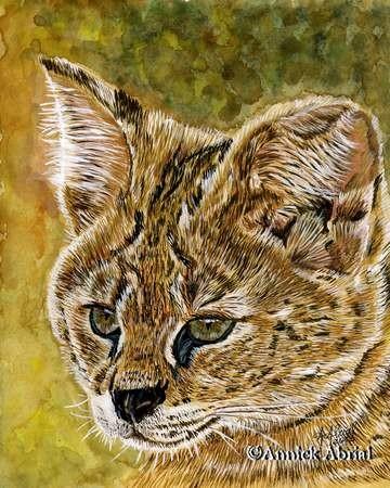 Le Serval - peinture à la gouache - Art animaier - 29 cm x 24 cm - Disponible