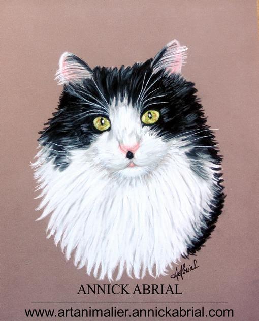 Portrait aux pastels secs de Balou réalisé sur commande 32 x 24 cm