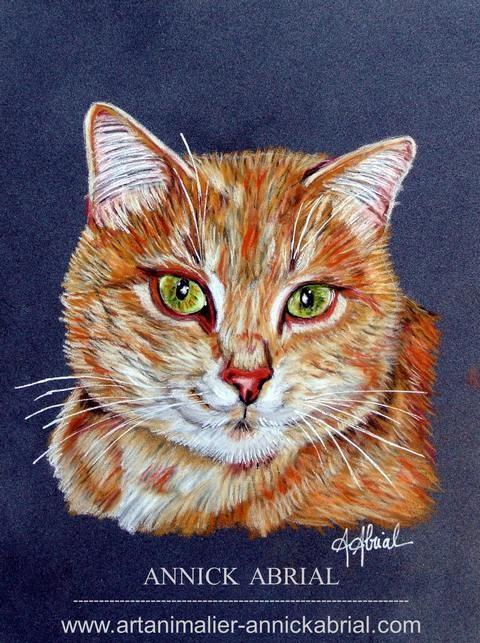 """Portrait au pastel sur commande de """"Abricot"""" format 18 x 24 cm"""