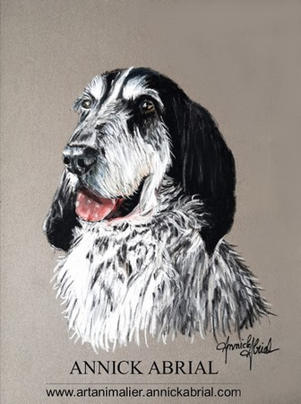 Portrait aux pastels secs de Jerry (portrait réalisé sur commande) 18 cm x 24 cm