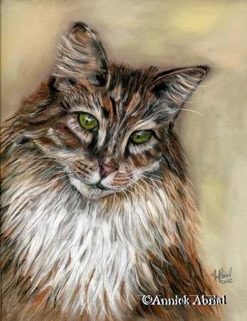 Le norvégien - Pastel sec - Art animalier - 32 cm x 24 cm - 2012 - Disponible