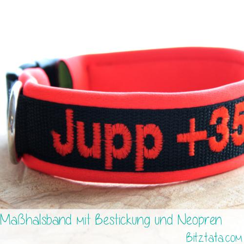 """Maßhalsband aus 3cm breitem Gurtband und mit Neonorangem Neopren unterlegt. Bestickt mit Namen und Telefonnummer im """"Block Large""""-Font."""
