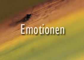 Valerie Forster, Button, Emotionen