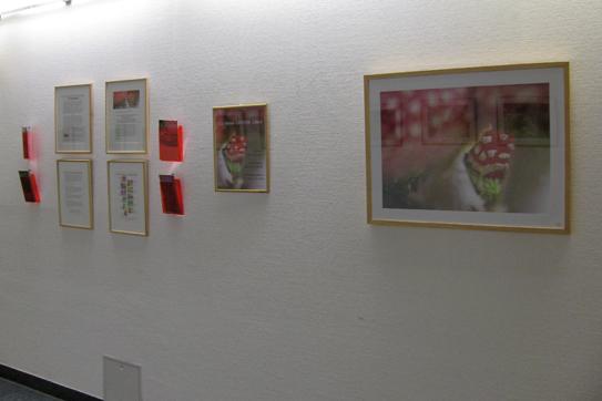 Valerie Forster, Ausstellung, Das kleine GROSSE Glück
