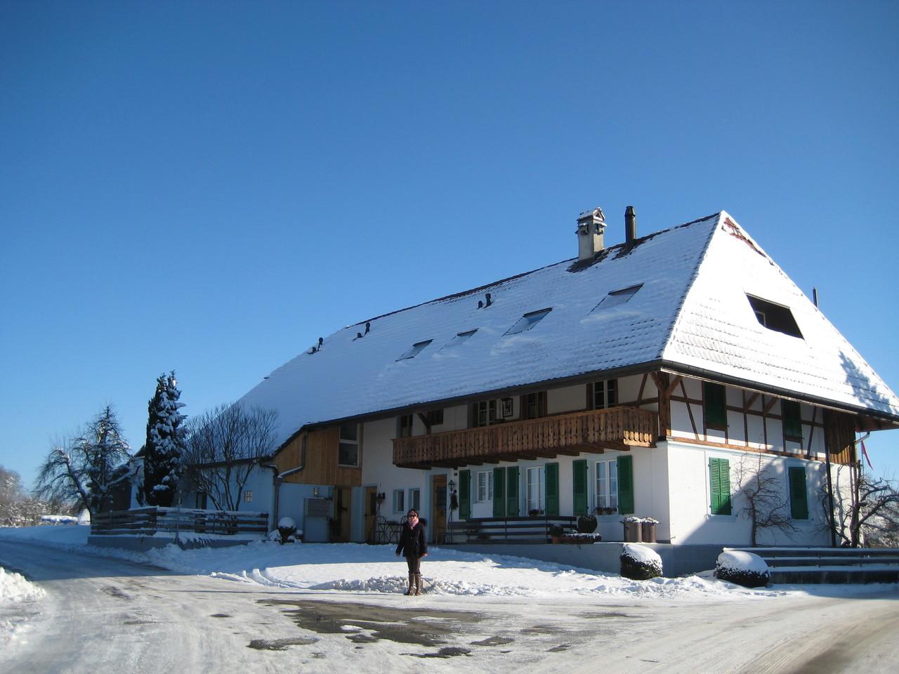Im Schweizer Winter / Suiza en invierno