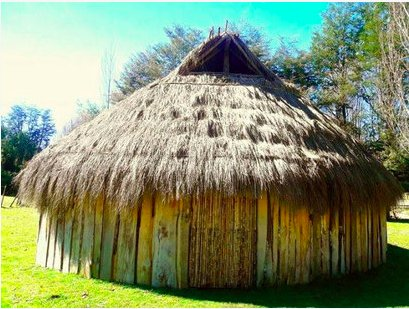 Learn Spanish and about Mapuche Culture