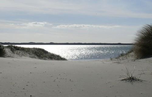 sortie nature, sur mesure, guide, spécialiste, Baie de Somme, Baie d'Authie, falaises, Côte Picarde, séminaires entreprises