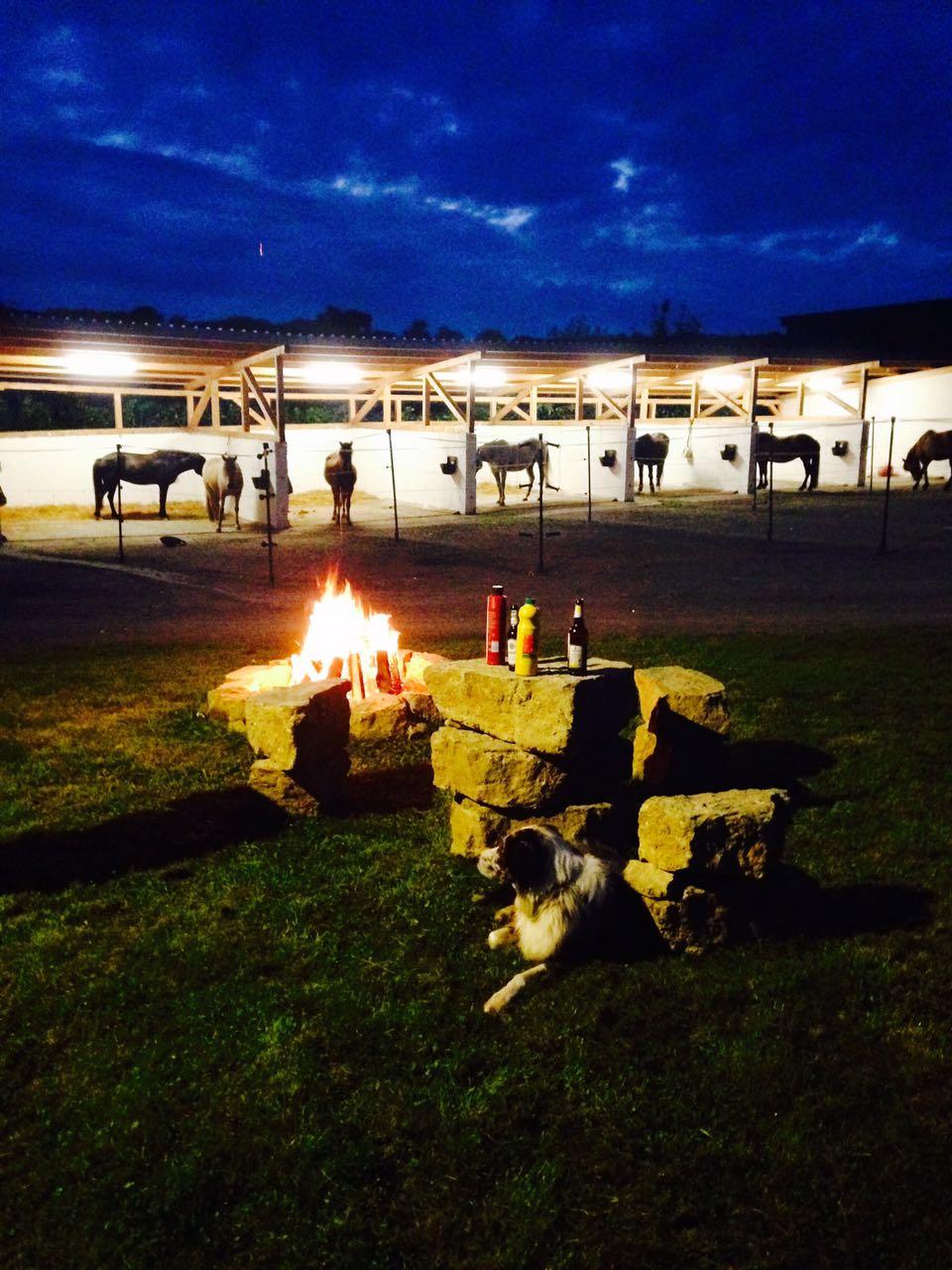 Zentrum für Pferdegesundheit: Lagerfeuer vor den Therapieboxen