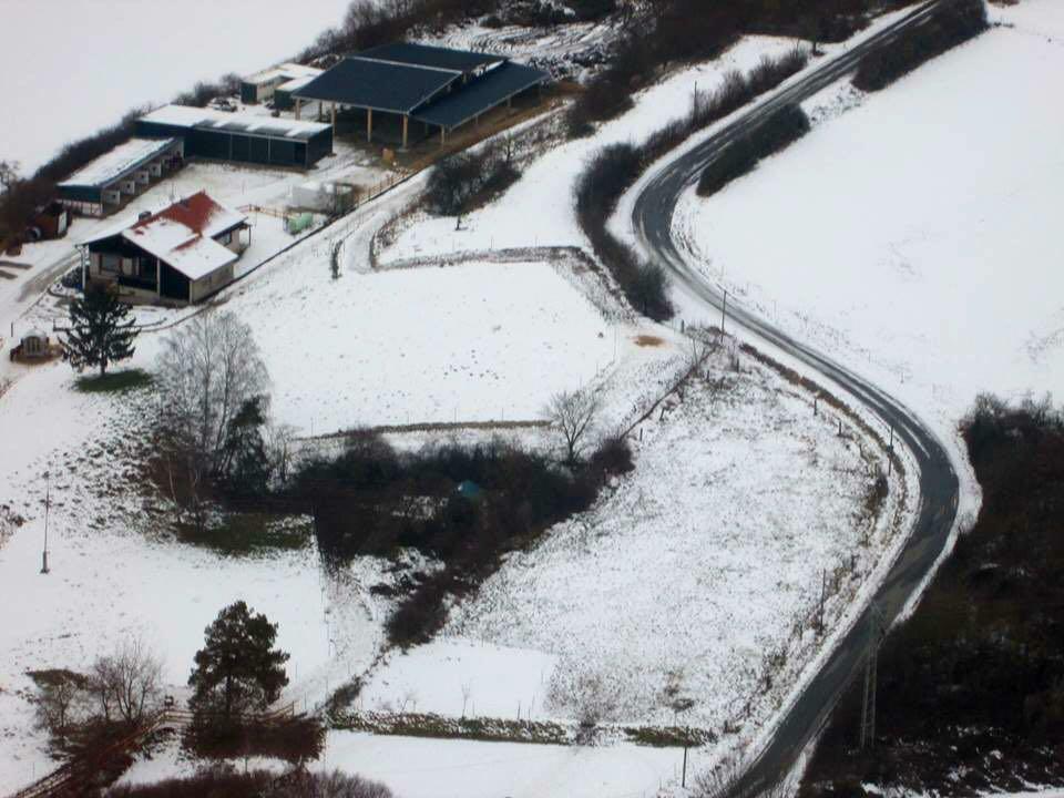 Zentrum für Pferdegesundheit: Winter-Wonderland