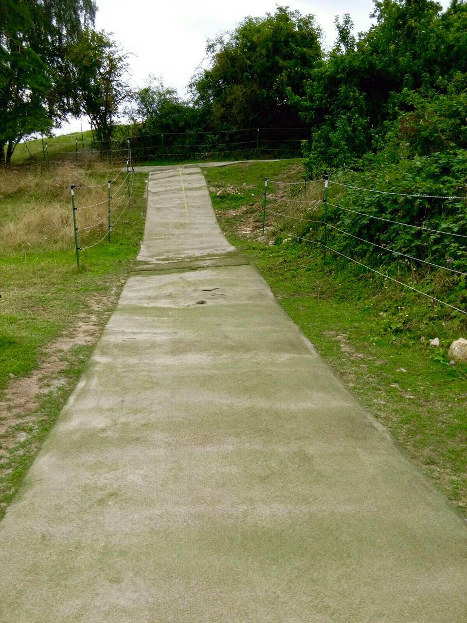 Zentrum für Pferdegesundheit - Paddocktrail: Kunstrasen