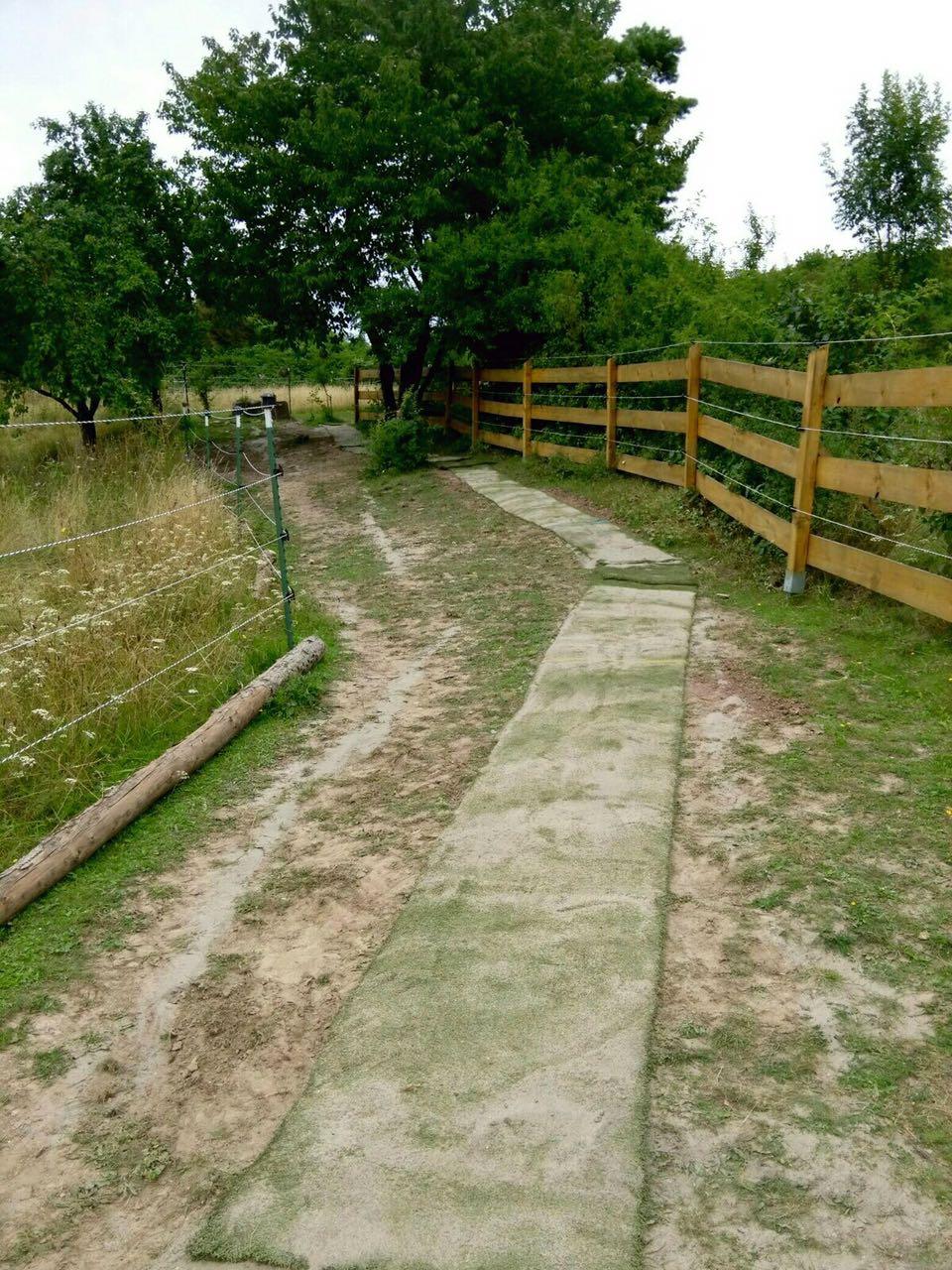 Zentrum für Pferdegesundheit - Paddocktrail: Laufweg Variante
